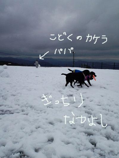 雪遊び孤独なパパ