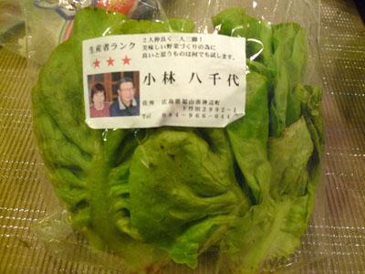 いただいたの。。。。無農薬のサラダ菜