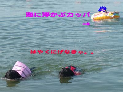 海とうさんのコピー