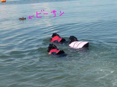海ビーサン再び