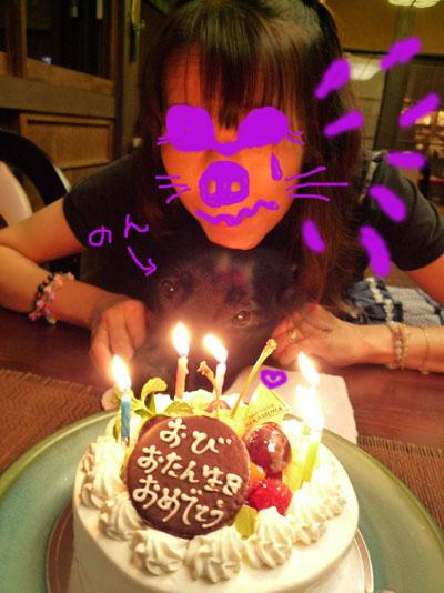 小笠原ケーキのん