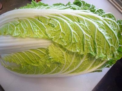 白菜でっかいの