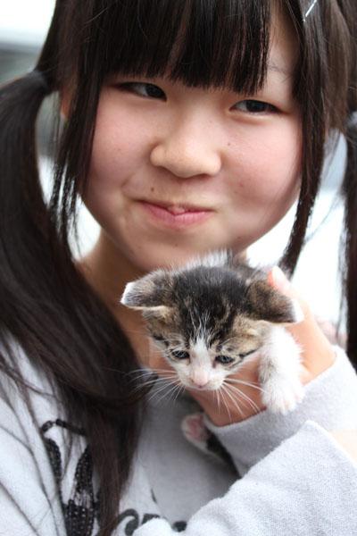 猫決まった子 かんなちゃん