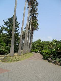 319翰林公園