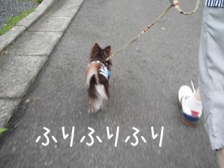 SIMG_7924.jpg