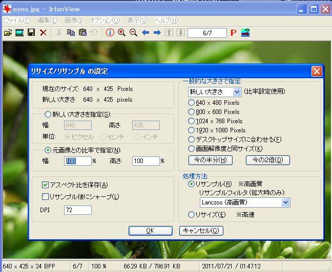 IrfanView3.jpg
