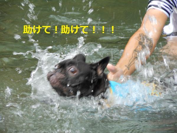 tsuke.jpg