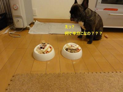 001_20101217193118.jpg