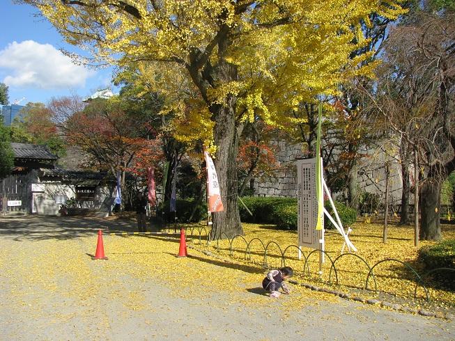 大阪城公園紅葉 その2 blog