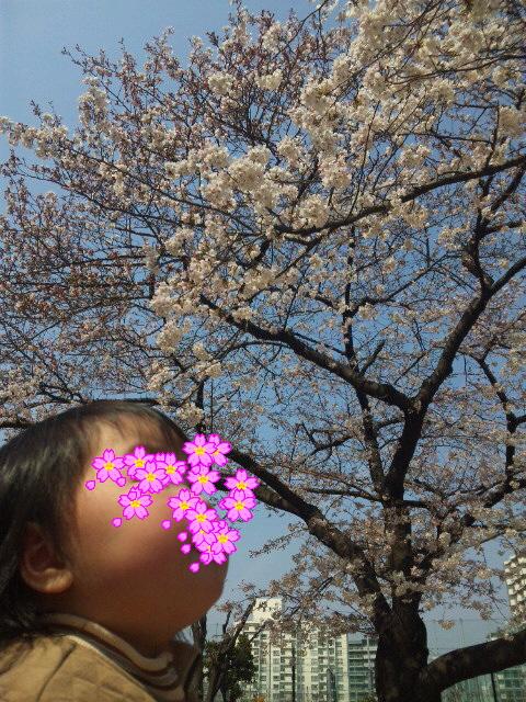 moblog_7827111c.jpg