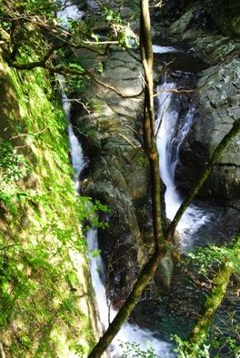 矢研5二条の滝