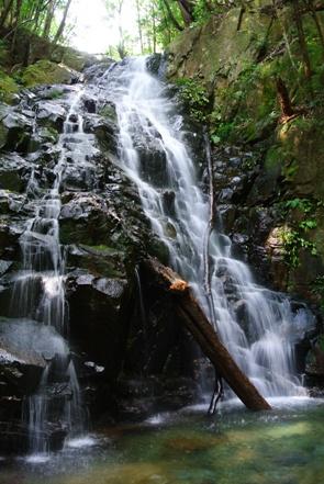 矢研7青葉の滝