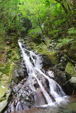 矢研8若葉の滝