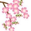imagesCAZVLG1Z_20130407112417.jpg
