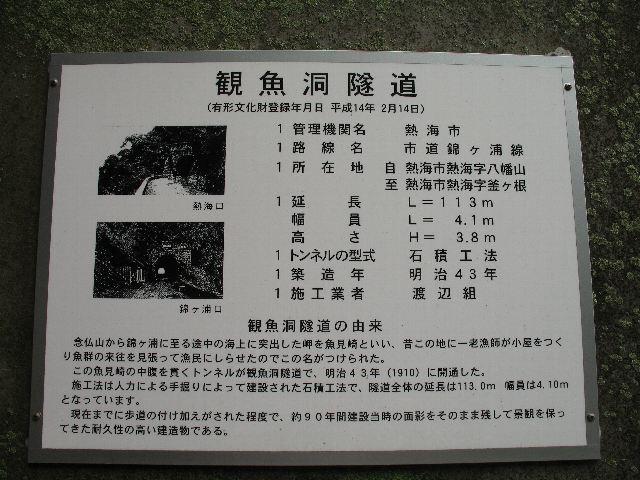 SVOin06.jpg