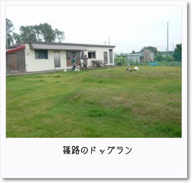 [photo14183011]image