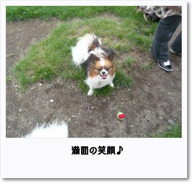 [photo14181761]image