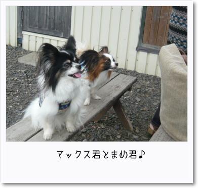 [photo14182037]image