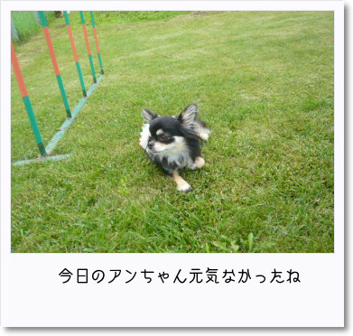 [photo18185344]image 加工