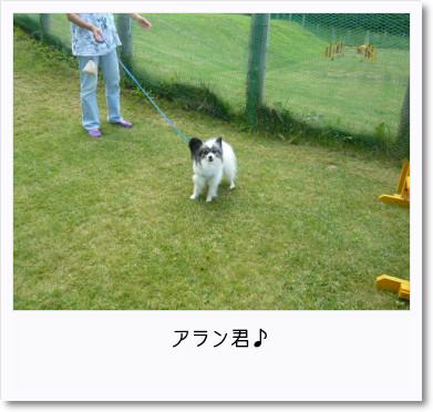 [photo18185644]image 加工