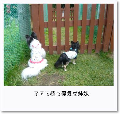 [photo18185515]image 加工