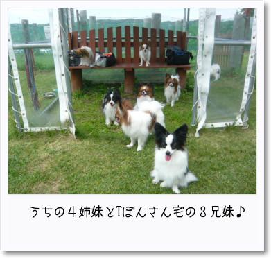 [photo18185856]image 加工