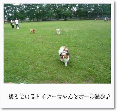 [photo19193134]image 加工