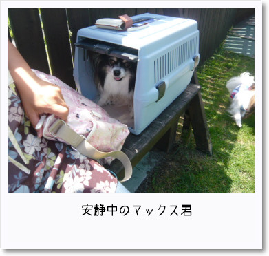 [photo25190446]image 加工
