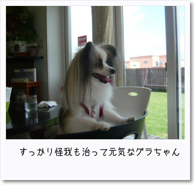 [photo25190562]image 加工