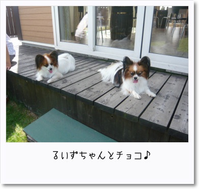 [photo25191041]image 加工