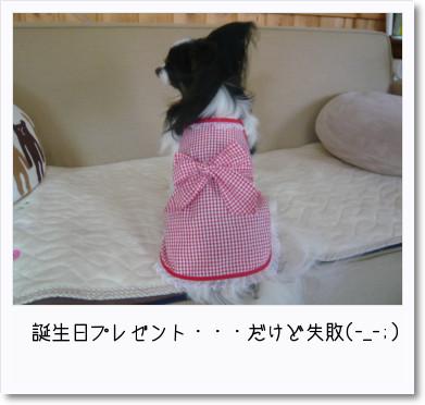 [photo14193323]image 加工