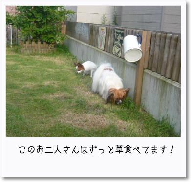 [photo14193223]image加工