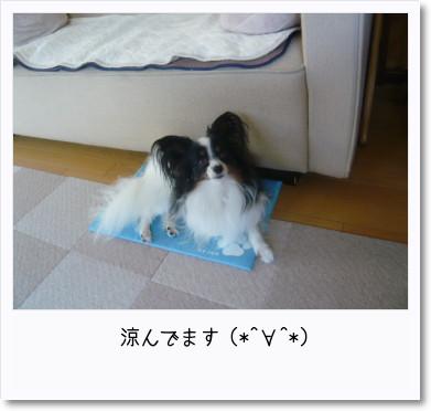 [photo14193007]image 加工