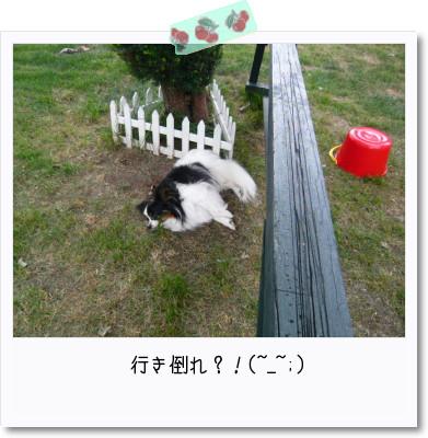 [photo22205964]image 加工