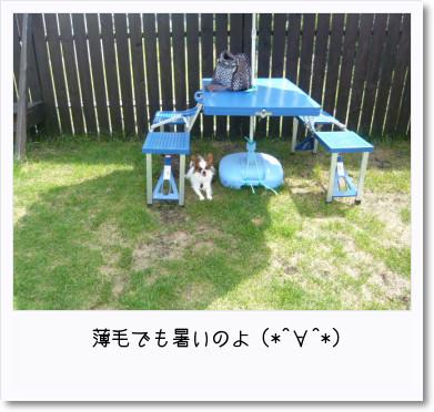 [photo22210457]image  加工
