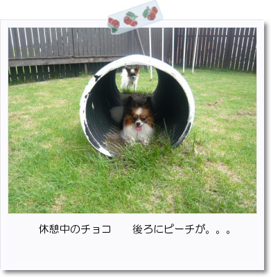 [photo25164241]image 加工