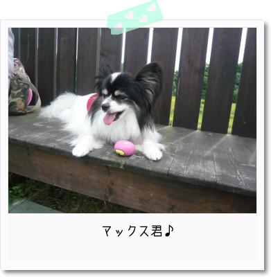 [photo25164627]image 加工