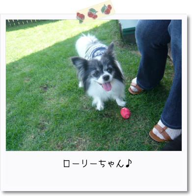 [photo25165929]image 加工