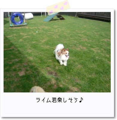 [photo25165469]image 加工