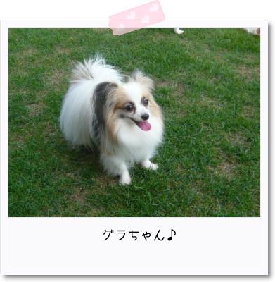 [photo25165788]image 加工