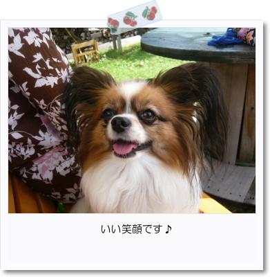 [photo20083005]image 加工
