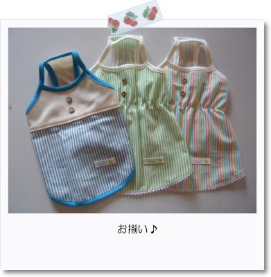 [photo20083186]image 加工