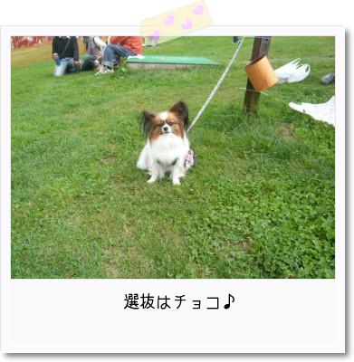 [photo29091328]image 加工