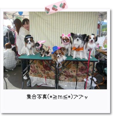 [photo29091599]image 加工