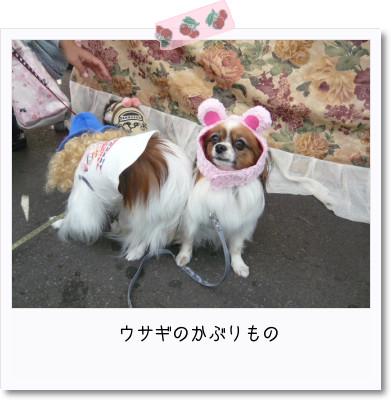 [photo29091491]image 加工
