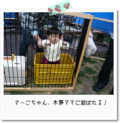 [photo03194541]image 加工
