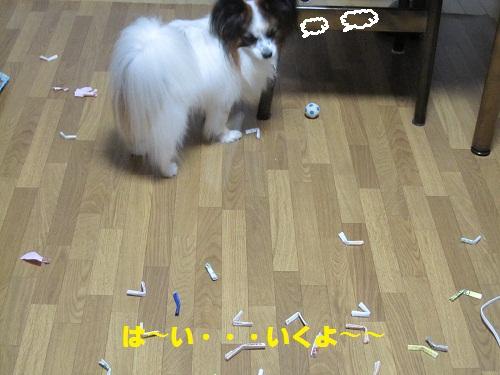 001-3_20111010221320.jpg