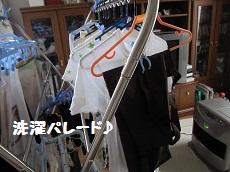 019-2_20111006132651.jpg