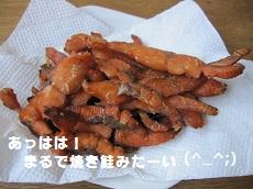 024-2_20111103180001.jpg