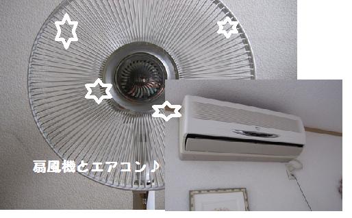 -2この夏の1位~!!